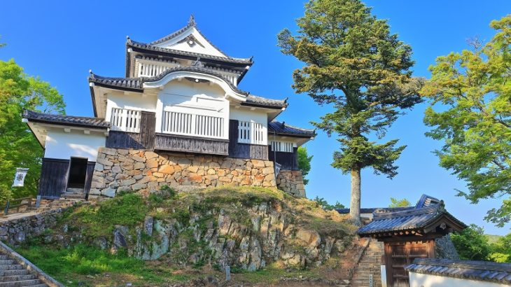備中松山城(BicchuMatsuyama-Castle)