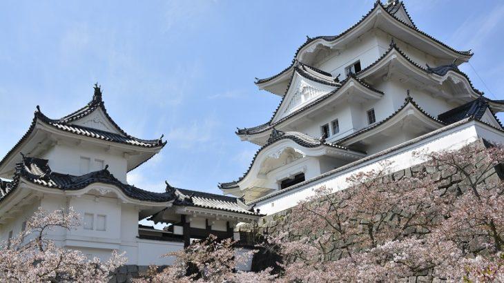 伊賀上野城(IgaUeno-Castle)