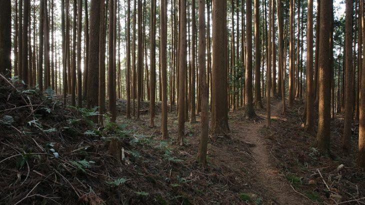古宮城(Furumiya-Castle)