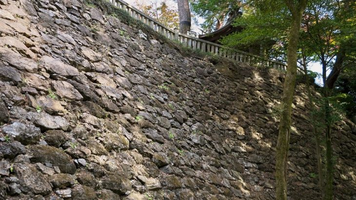 唐沢山城(Karasawayama-Castle)