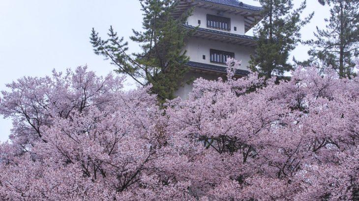 高遠城(Takato-Castle)