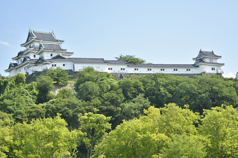 和歌山城「大・小天守、櫓」