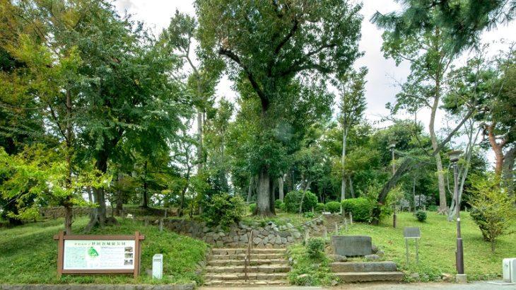 世田谷城(Setagaya-Castle)