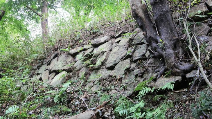 飯盛山城(Iimoriyama-Castle)