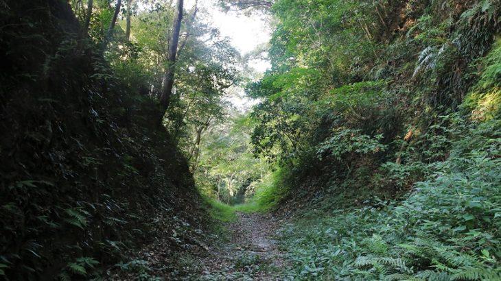 志布志城(Shibushi-Castle)