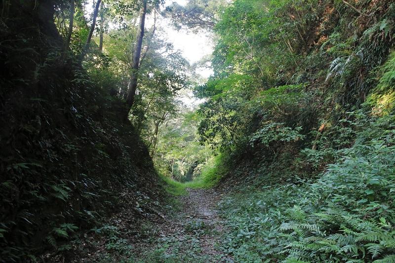 志布志城跡